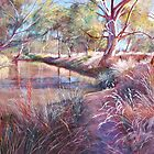 &#x27;Sunday Creek at Dochery&#x27;s Road, Tallarook&#x27; by Lynda Robinson