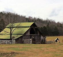 Tucker Barn - Linden, Tennessee, USA by aprilann
