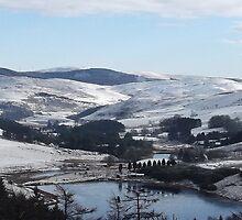 Bwlch Nant Yr Arian Cerdigion Mid Wales by Peter O'Driscoll