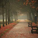 Autumn Morning by Ursula Rodgers