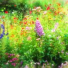 Magic Garden by Sarah-fiona Helme