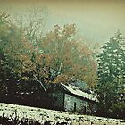 Gorham New Hampshire October Snow ll by BavosiPhotoArt