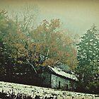 Gorham New Hampshire October Snow ll by BavosiPhotoArt