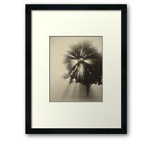 Amazing Sunrise! Framed Print