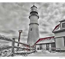 Bird House of Portland Head Light by Richard Bean
