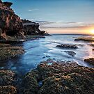 Sea weed sunset by Adriano Carrideo