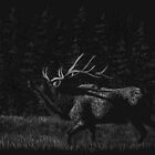 Forest Majesty - elk by Heather Ward