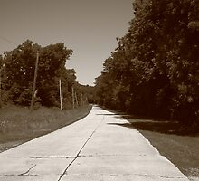 Missouri Route 66, 2012, Sepia. by Frank Romeo