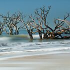 Botany Bay -  Edisto Island  by JHRphotoART