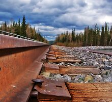 Tracks of Cadomin by Keri Harrish