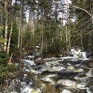 Cold Creek by Monica M. Scanlan