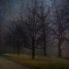 Night Study by Mary Ann Reilly