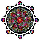 8 Rose Window by Matthew Sergison-Main