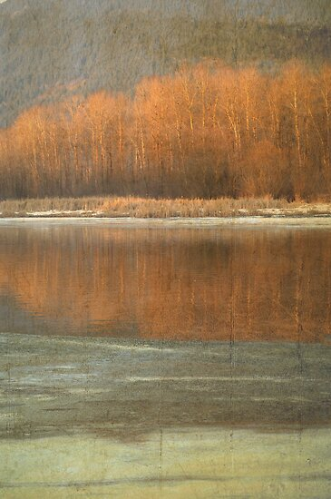 Winter Hues by Annie Lemay  Photography