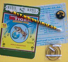 Earth Tiger by Sue O'Malley