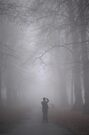 Shooting the Fog by Ursula Rodgers