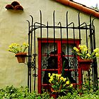 Wrought Iron Window by debidabble
