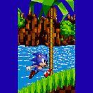 Sonic on Green Hill by sonicfan114