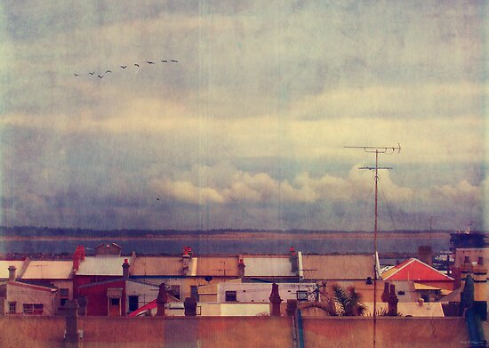 Over the rooftops by Ursula Rodgers