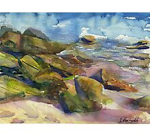 colorful sea stones at low tide Photographic Print