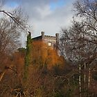 Aberagevnny Castle through the trees by blakmountphoto