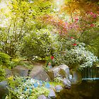 Japanese Garden_2 by Elizabeth Thomas