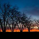 Plain Sunrise by John  Sperry