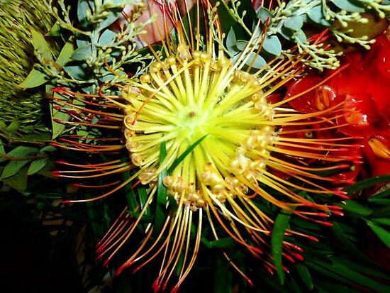 Hawaiian Flower by joiwatani