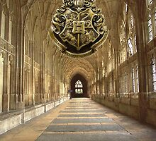 Run! You're late for class!!! Hogwarts by Serdd