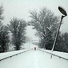 Winter classic by Aleš Sotelšek