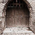 Enter if you dare..... by Martina Fagan