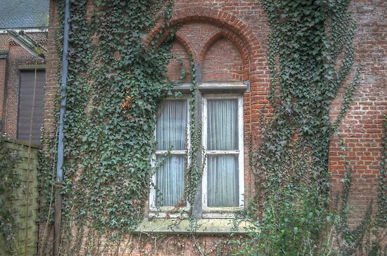window in old abandoned chapel by Nicole W.