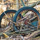 Old Discarded cart by vivendulies
