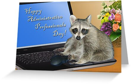 Admin Professionals Day Raccoon by jkartlife