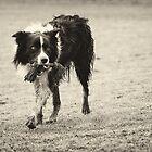 Playtime by Karen Havenaar