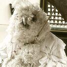 Carneval: Big Bird by vivendulies