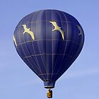 Jonathan Livingston Balloon by Gene Walls