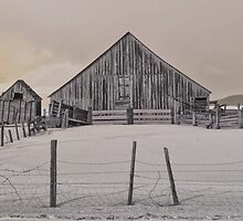 Old barn in the snow by BeardyGit
