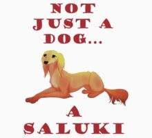 Not just a dog... a Saluki by pangrizabella