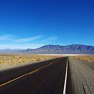 Highway through the desert, Nevada by Claudio Del Luongo