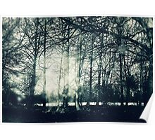 Faerie Wood Poster