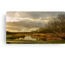 The take-off Canvas Print