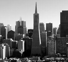 TransAmerica Pyramid: San Francisco by LoanExhibit