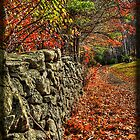 Old cemetary stone wall in Granville MA by Bill Gorman