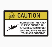 Hornets - Caution (skull) by Diabolical