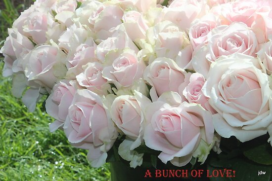 bunch of love by Jeannine de Wet