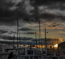 Queenscliff - First Light on the Harbour by Larry Lingard-Davis