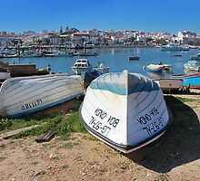 The Fishing port Lagos Portugal by Paul Pasco