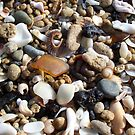Honey Amber Sea Glass and Tiny Seashells and Pebbles by Teresa Schultz