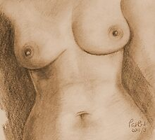 Nude Female Torso - PPSFN-0002-in Sepia by Pat - Pat Bullen-Whatling Gallery
